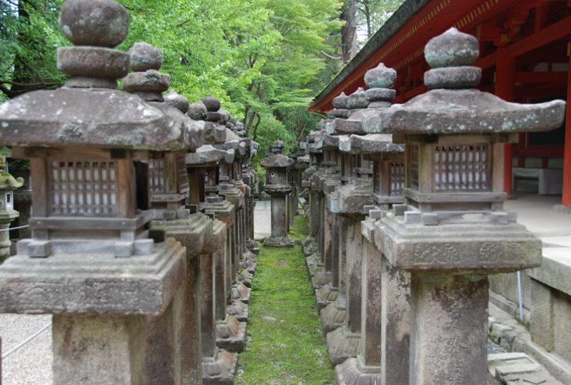 Nara, mezza giornata abbondante
