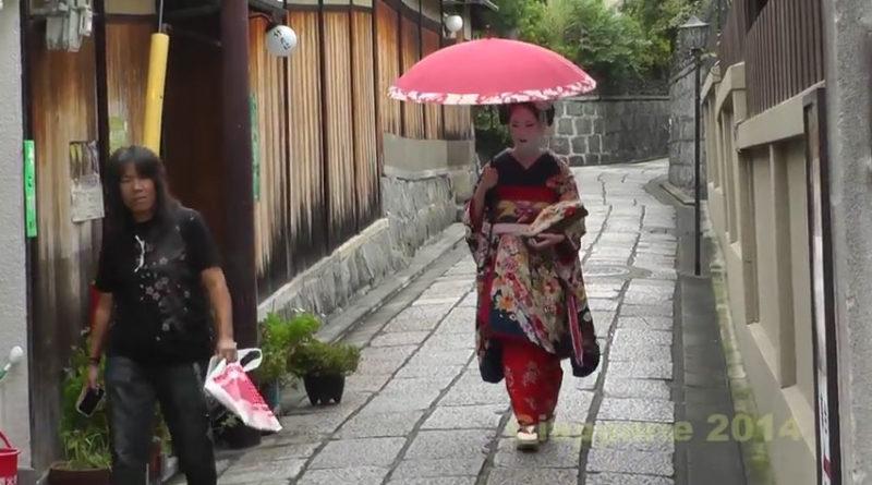 Caccia alla Geisha