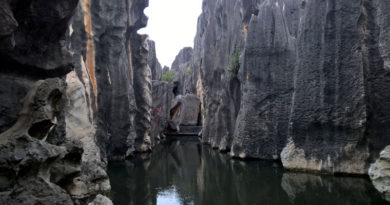 la foresta di pietra di Kunming