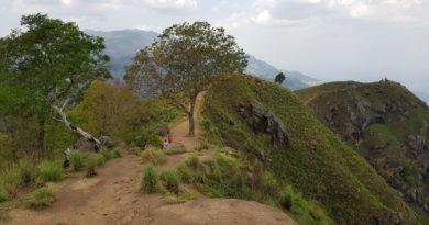 andare in Sri Lanka