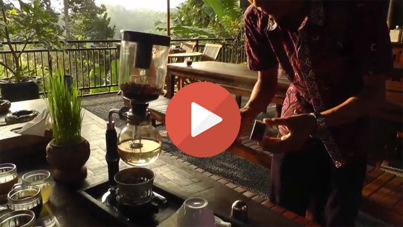 kopi luwak balinese