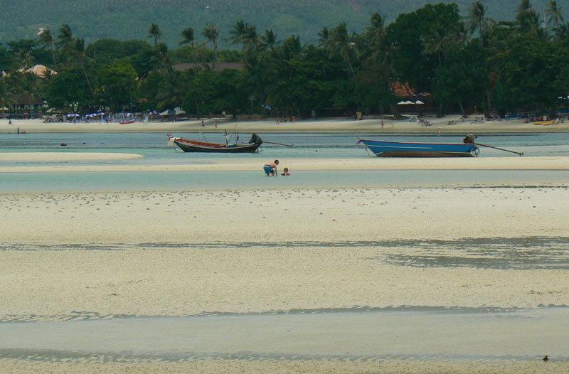 Bassa marea a Koh Samui