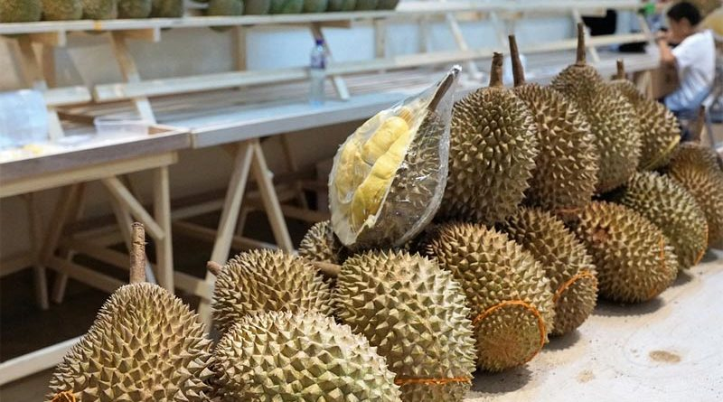 Il durian, pericolo pubblico numero 1 a Singapore
