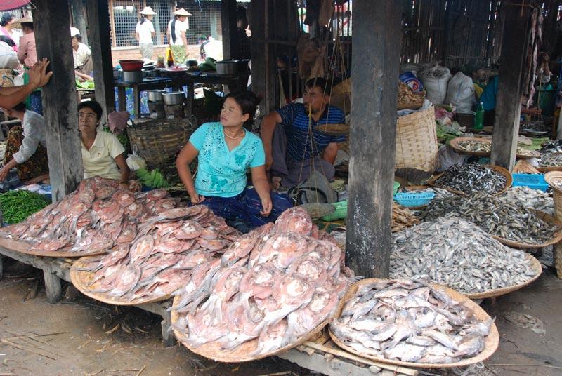 Pesce fresco e secco del lago Inle venduto in un mercato locale