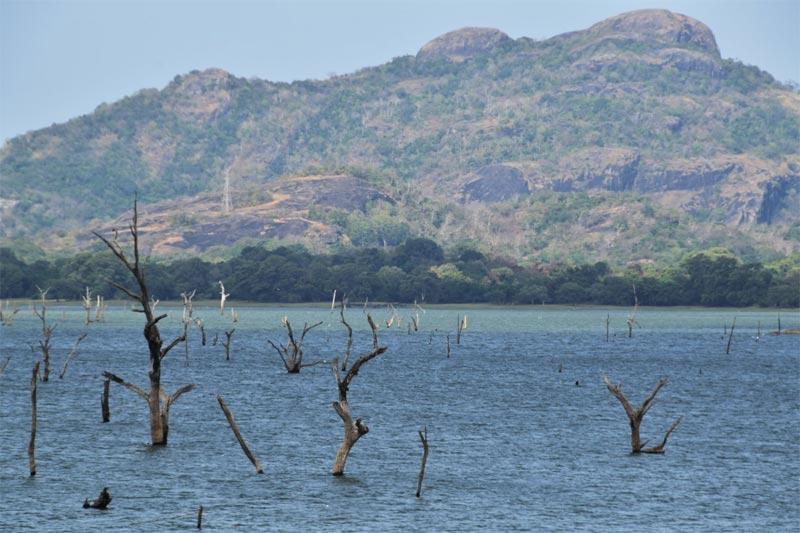 laghi artificiali dello Sri Lanka