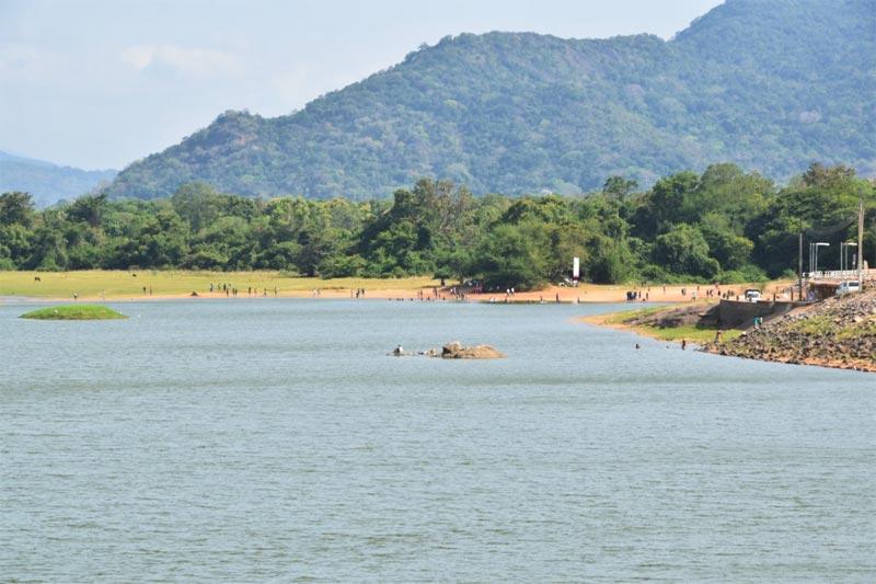 Una caratteristica sponda di un lago artificiale cingalese