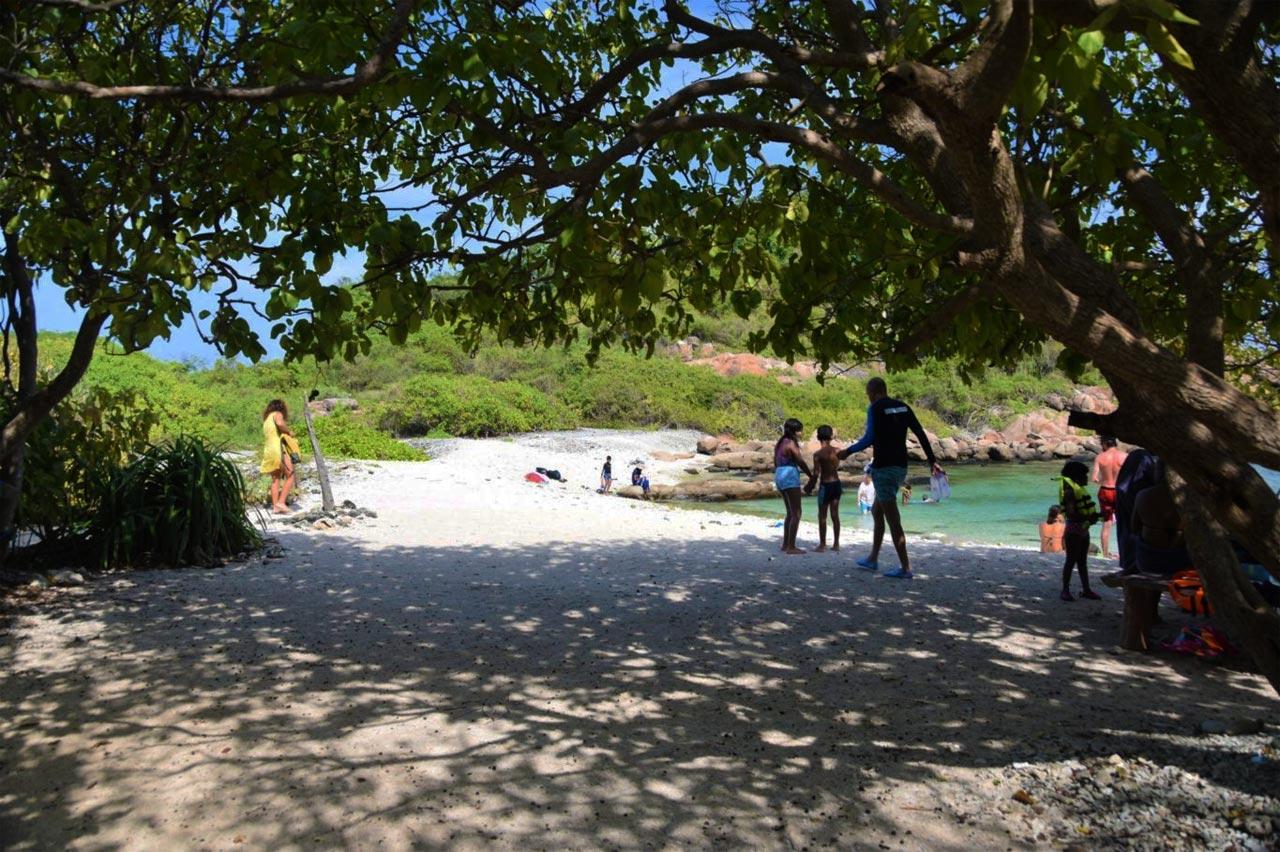 Pidgeon Island