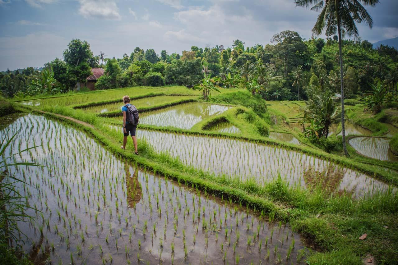 trekking a Chiang Mai