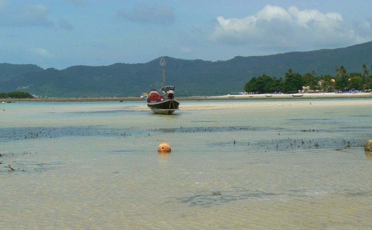 spiagge Koh Samui